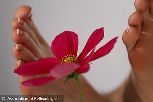 Reflexology. AOR Flower and Feet