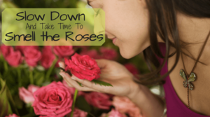 My Blog. Smell the Roses